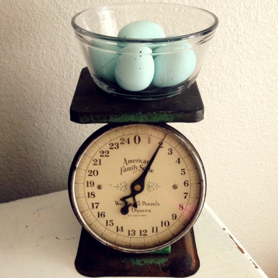 Vintage Scale With Robin Eggs